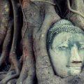 wat-mahathat--ayutthaya1