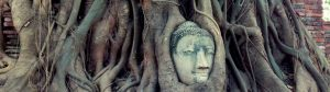 El templo Wat Mahathat de Ayutthaya